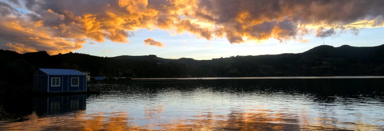 Sunset Dunedin