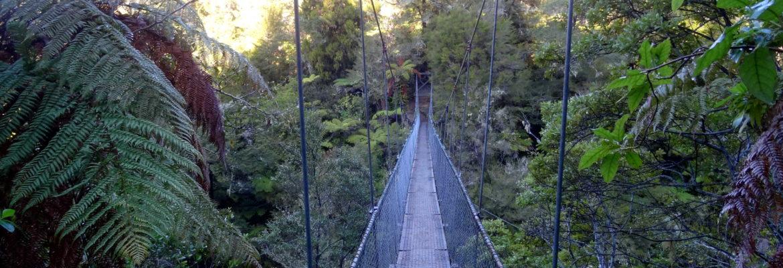Hängebrücke im Abel Tasman Nationalpark