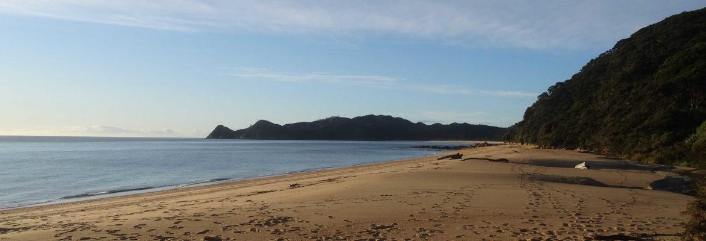 Strand im Abel Tasman Nationalpark
