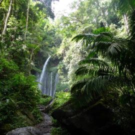Lombok – das unbekannte Paradies – plus Abstecher Gili Islands